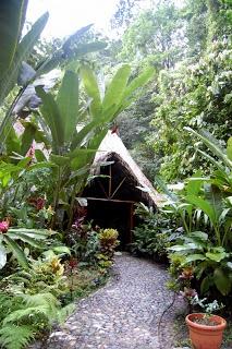 BLONDERLUST: Friday Hideaway #1 - Las Cascadas Lodge in La Ceiba, Honduras  http://blonderlust.com