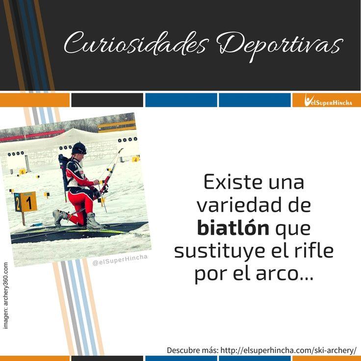 El Ski Archery es una variedad de biatlón que combina esquí de fondo con el tiro con arco