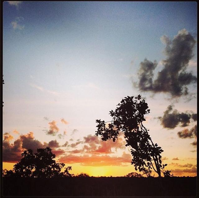 rooi rose Instagram - Traveling to Tanzania | Reis na Tanzanië #tanzania #selous #safari #travel