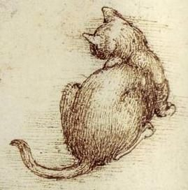 "Leonardo da Vinci - Detail from ""Cats in motion"", c.1513-16 - Pen and ink with wash over black chalk."