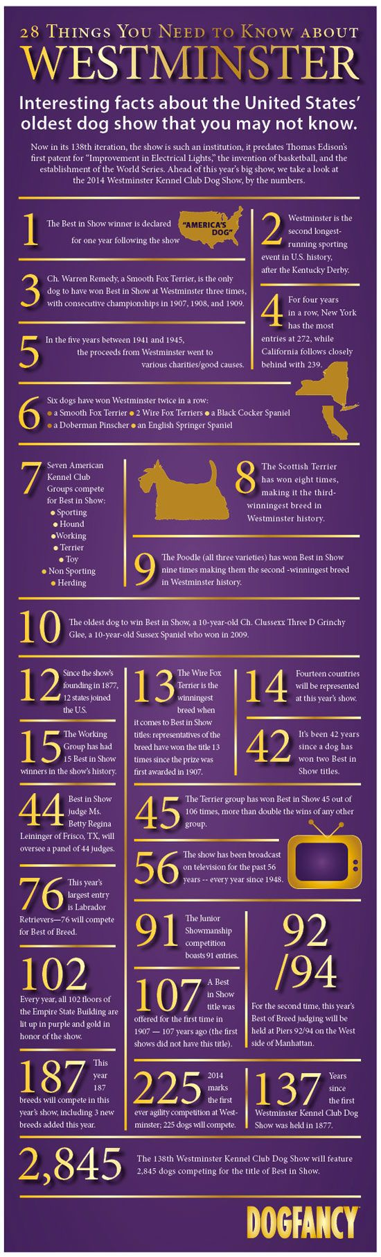 Get the facts about the Westminster Dog Show that you may not know, but should.