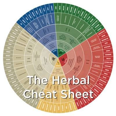 #TheDailySimple from Mountain Rose Herbs: Ever feel overwhelmed when deciding which herb to use? Well, we have a very special free gift to share! Rosalee de la Forêt created this easy to use blueprint for learning which herbs are appropriate for your unique health questions. You can download it FREE right here