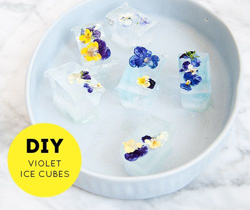 a quick and easy way to add a little pizazz to ordinary ice cubes!