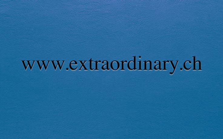 www.extraordinary.ch Premium Domainname Verfügbar für Akquisition auf / Nom de Domaine Premium Disponible pour Acquisition sur / Premium Domain Name Available for Acquisition on www.spotnet.ch für / pour / for 5'950.- CHF
