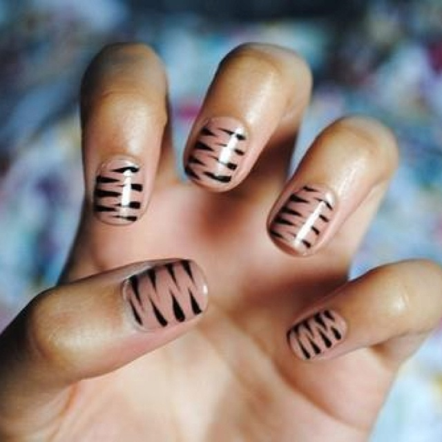 Nail Art (Stripe , Animal)
