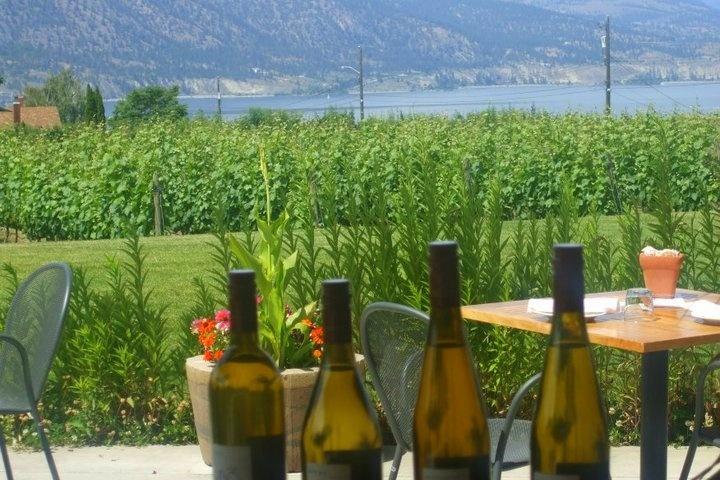 Winery in the Okanagan Valley, British Columbia, Canada.