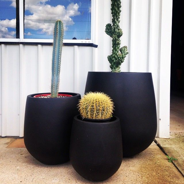 OPtion 2- JITT pots will match the large muffintop pot option more expensive than terrazzo pots