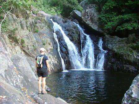 Hiking through the beautiful rain forest environment to breathtaking Spring Creek falls or Hidden Valley near Port Douglas with www.backcountrybliss.com.au