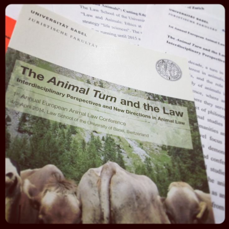 The Animal Law Podcast is Here! Episode 1, Featuring Steve Wise (June 2015)