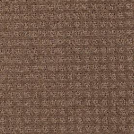 Stainmaster Designboro Essentials Pinecone Cut And Loop Carpet Sample S508603pinecone-Boro