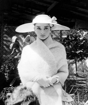 The Stunning Audrey