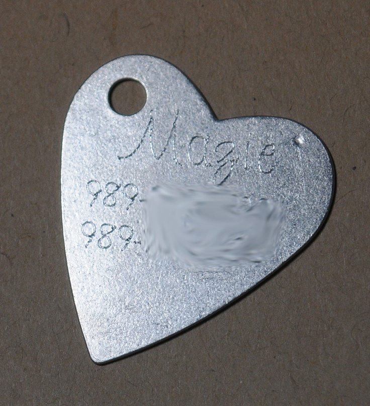 24 Best Cricut Engraving Images On Pinterest Dog Tag