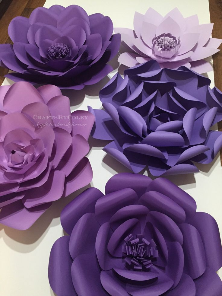 695 best paper flowers images on pinterest paper flower backdrop 5 set purple passion large paper flowers paper flower backdrop home decor wedding decor candy buffet party decor customize your colors mightylinksfo