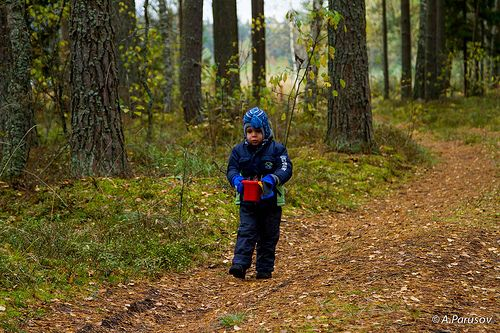 Boy in the forest