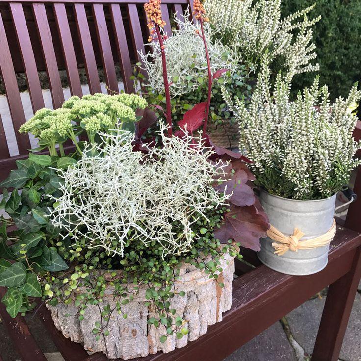 Amazing Herbstdeko im Garten der Terrasse oder auf dem Balkon