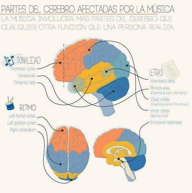 El Rincon de mi Espiritu: Los efectos de la música en el cerebro de los niño...