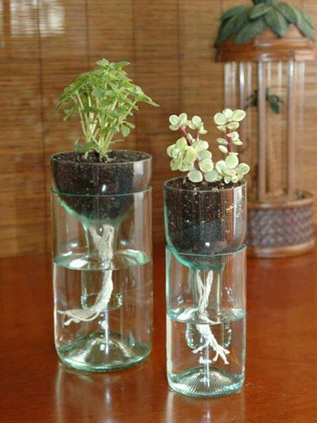 Before you throw away that empty wine bottle after the next party with the gang, consider these awesome things you could turn it into. From a pretty tea light holder to a vase or even a garden border, old wine bottles make for nifty knick knacks and gifting options too. This World Environment Day, take a look at six interesting ways to recycle an old wine bottle into an objet d'art.