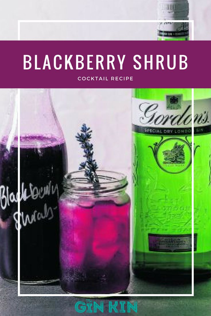 This Blackberry Shrub Gin Cocktail is super yummy and perfect for summer!