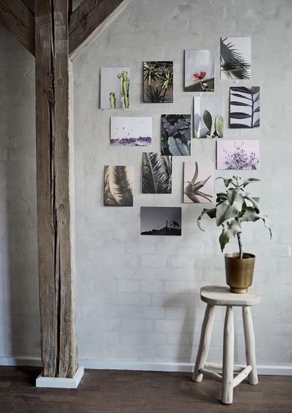 Flora Plant  Print // Interior // Botanic   Beautiful styling and photographing by: Lone Monna & Camilla Hey. Flora Print // Interior //