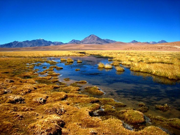 Atacama Desert, Chile (been there)