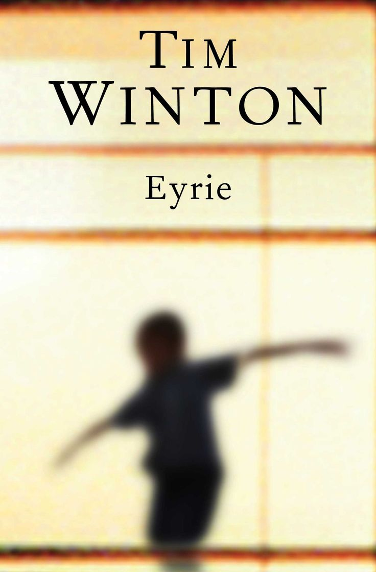 Eyrie by Tim Winton.