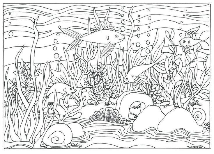 tropical fish coloring pages - fish aquarium scene coloring page coloring for adults