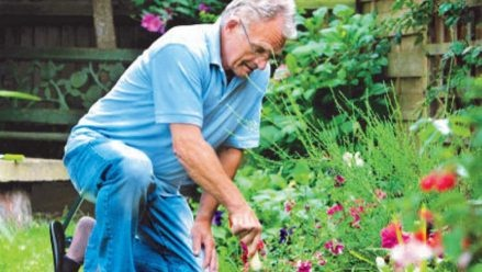 Gardening Charity - helping elderly and promoting wellbeing - Greengage - Social isolation is a concern for many older people, as physical health begins to restrict their involvement in social and recreational activities, sometimes leading to a deterioration in their mental health & wellbeing