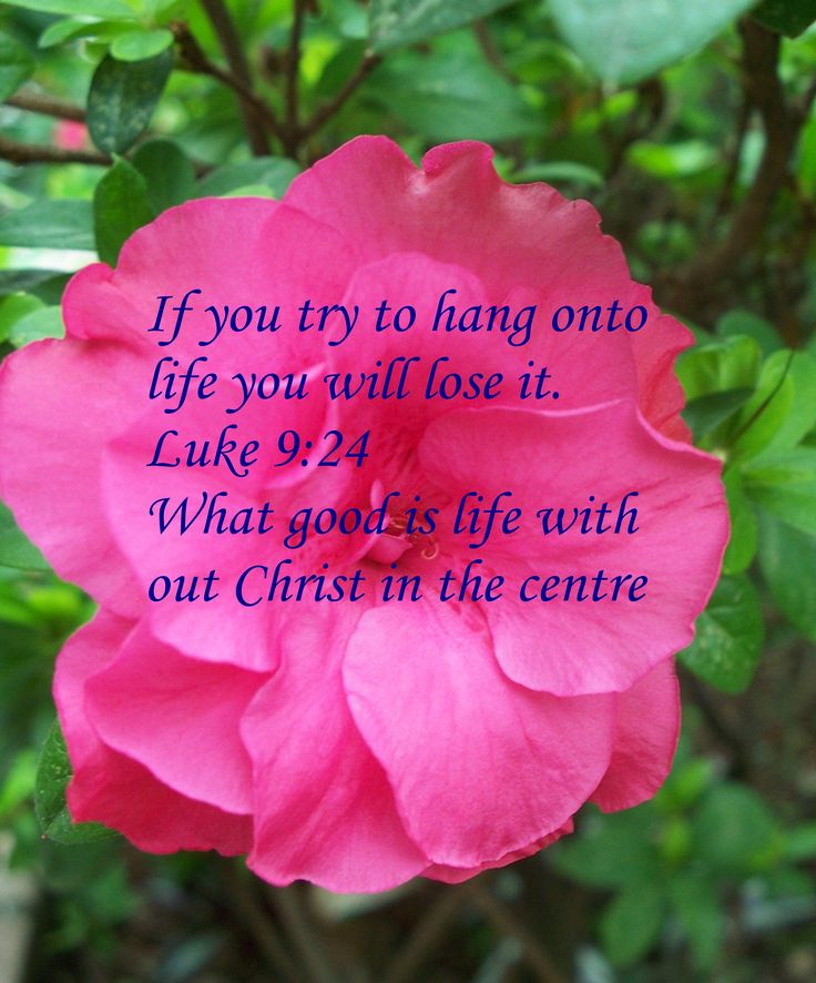 Life without Christ is no life at all