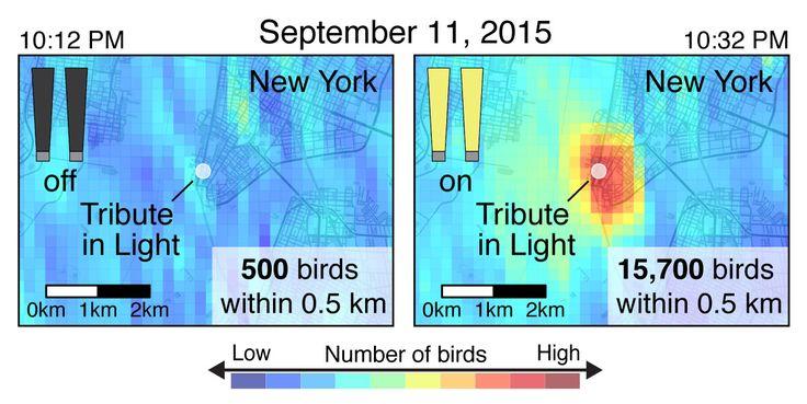 Tribute in Light radar images
