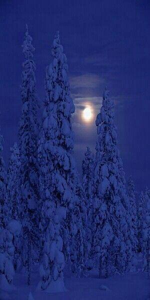 Darkness and Moon in Kuusamo, Finland.