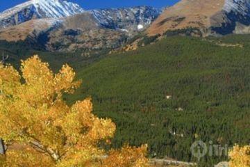 Breckenridge image