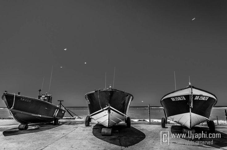 Arniston harbor