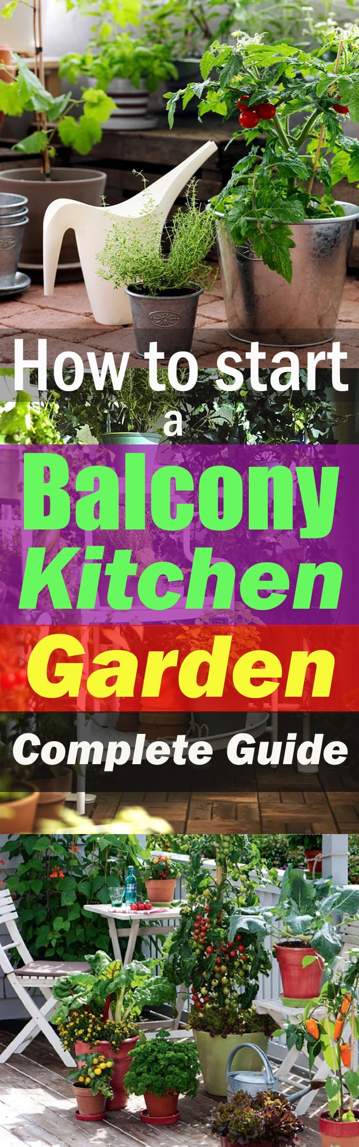 How to Start a Balcony Kitchen Garden Container Ve able GardeningVeggie GardensOrganic