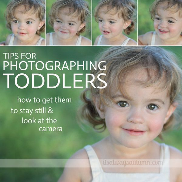 tips for photographing toddlers: getting them to sit still & look at you