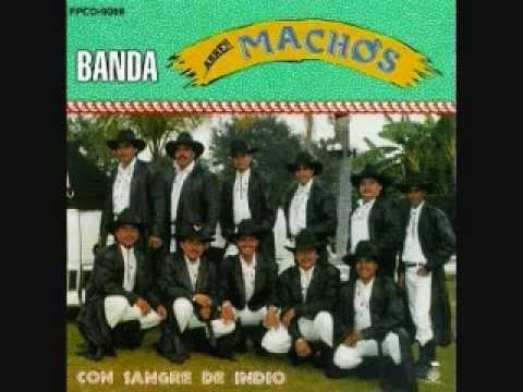 Banda Machos - Al Gato y al Ratón - YouTube