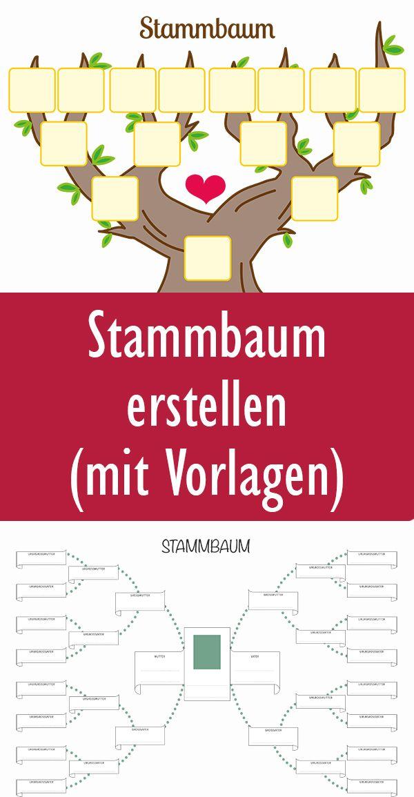 Stammbaum Vorlage Kostenlos Als Pdf Kribbelbunt 10