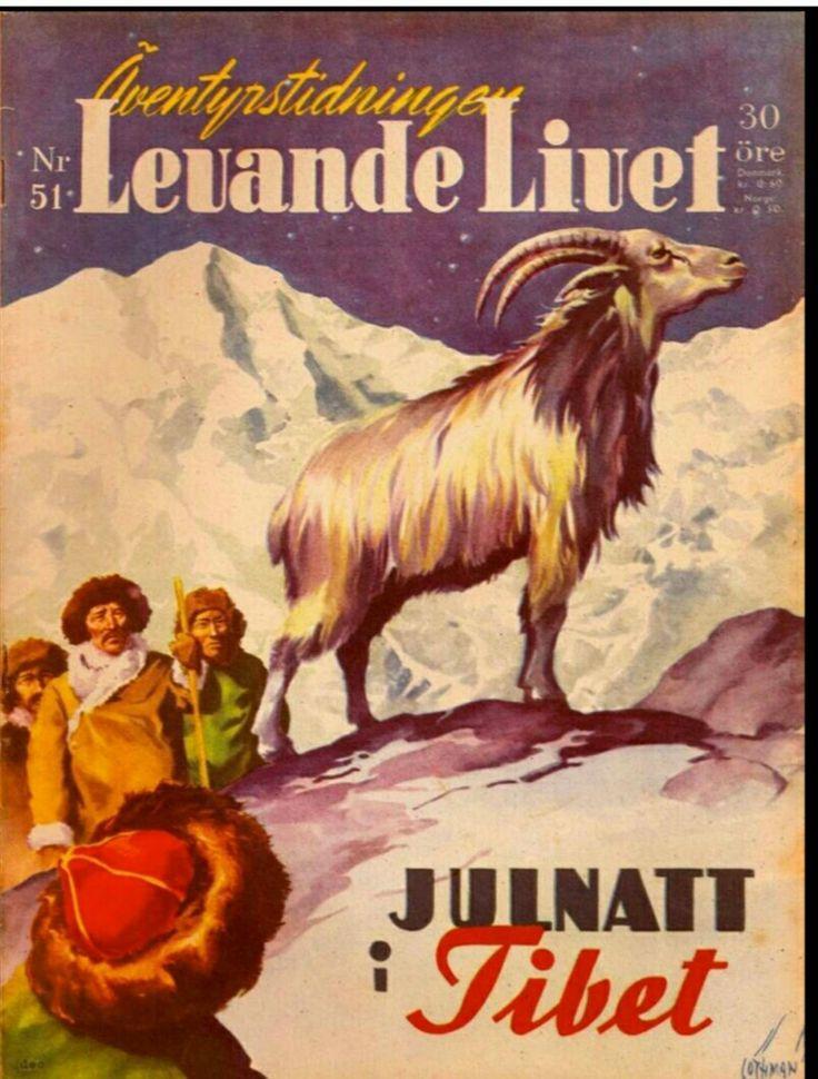 """""""Julnatt i Tibet"""" som här illustreras av Allan Löthman 1947"""