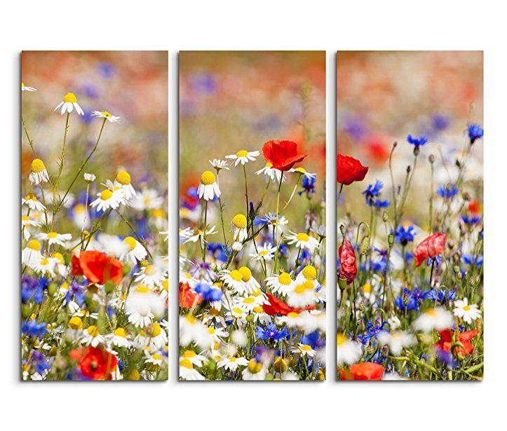Leinwandbilder Blumenwiese