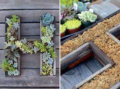 14 idee fai da te per creare bellissimi giardini verticali - Guida Giardino