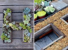 DIY this succulent letter frame in under 30 minutes.