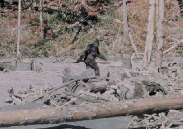 Bigfoot (Patterson–Gimlin film, 1967)