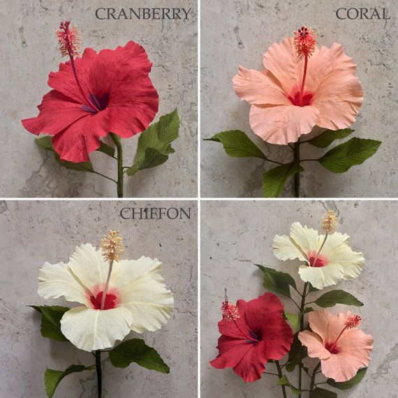 Crepe papel Hibiscus madre sola papel flores por NectarHollow