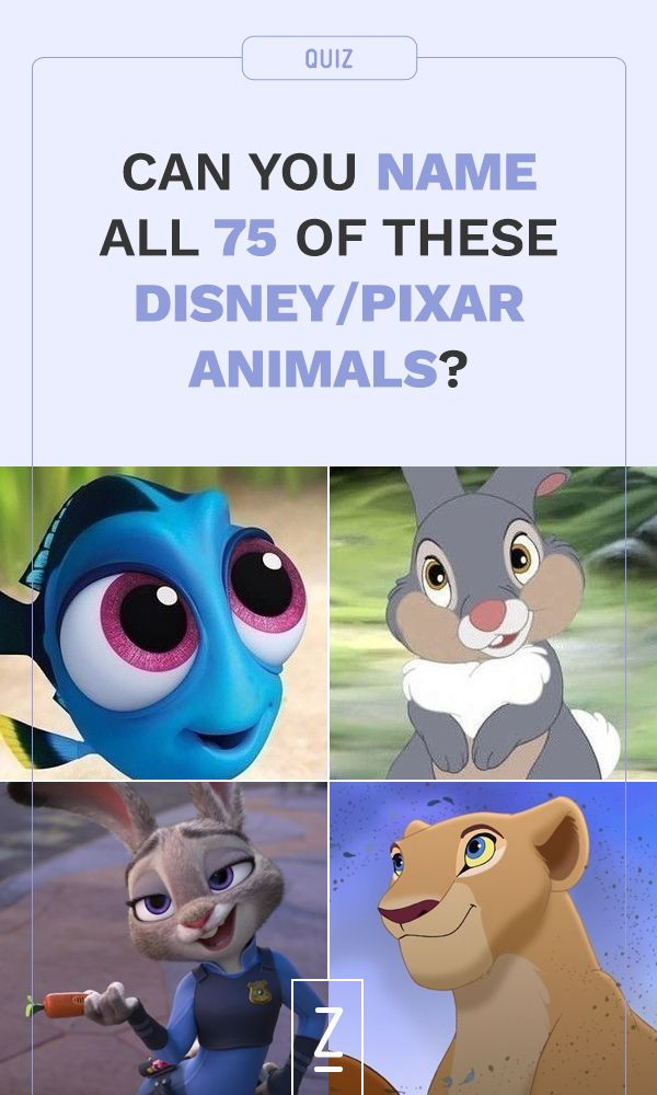 Are you a true Disney expert? Take our trivia quiz to see if you can name all 75 of these Disney/Pixar animals!