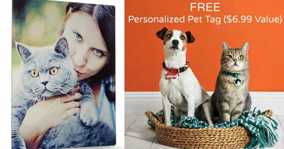 Shutterfly: FREE Pet Tag or 16×20 Photo Print (Up to $17.99 Value) – Just Pay Shipping