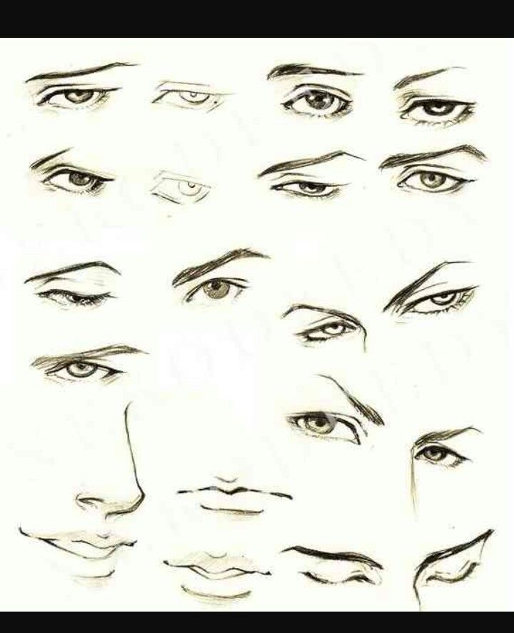 Pin By Flor Guzman On Drawing Anime Eye Drawing How To Draw Anime Eyes Nose Drawing