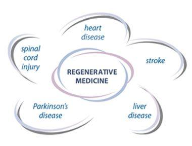 Applications of regenerative medicine in organ transplantation