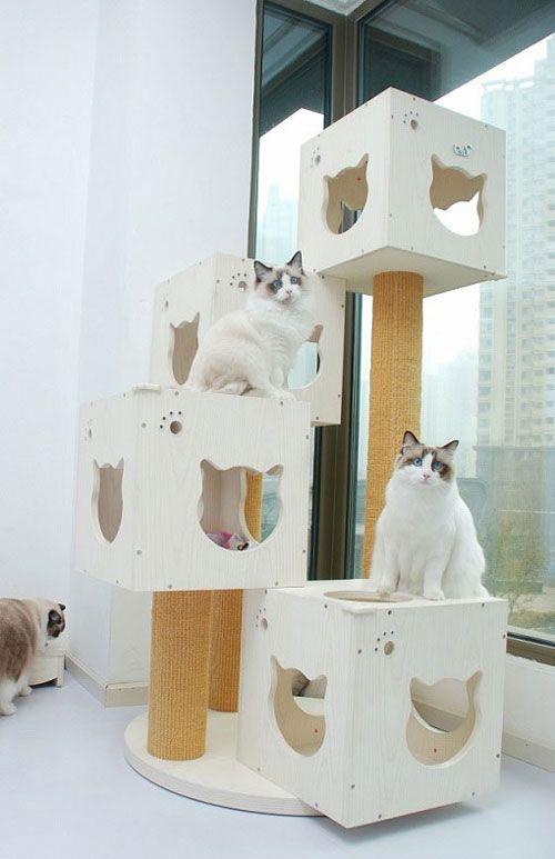 Meow-Cat.com: DIY Cats Head Shape Wooden Cats Tree