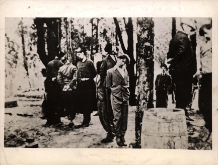 Poland, Jews who have been hung on trees.  This picture was publicized by Wide World Photoin America as evidence to the events of Germany and German occupied countries.