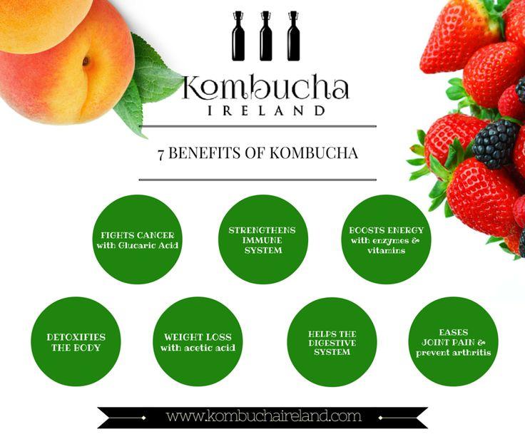 Where to Buy Kombucha in ireland