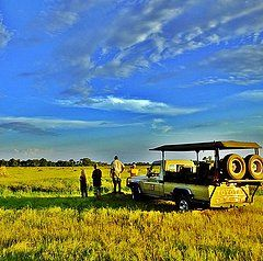 Johannesburg to Maun Safari This exciting adventure begins with a drive from Johannesburg through to Botswana's spectacular Okavango Delta. After visiting the Khama Rhino sanctuary, we cross the wilds of the interior settling in Maun, deep within the heart of Botswana. You join a 4×4 travelling across the buffalo fence where we join the Mokoro guides at the mokoro station. Spending three days in the heart of the Okavango, gliding across channels of crystal clear water,